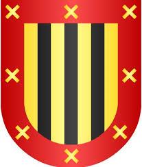 escudo olloki